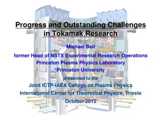 Progress and Outstanding Challenges  in Tokamak Research