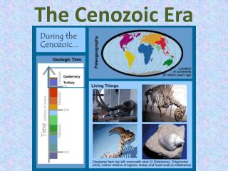 The Cenozoic Era