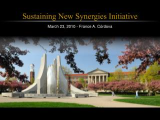Sustaining New Synergies Initiative