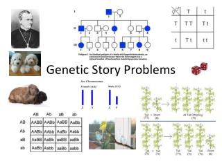 Genetic Story Problems