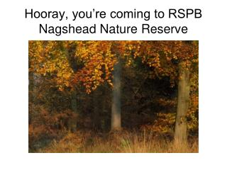 Hooray, you're coming to RSPB Nagshead Nature Reserve