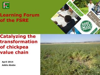 Learning Forum of the FSRE  Catalyzing the transformation of chickpea value chain