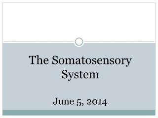 The Somatosensory System June 5, 2014