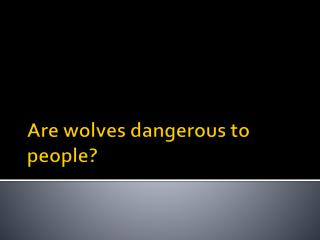 Are wolves dangerous to people?