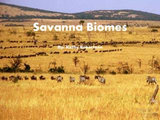 Savanna Biomes