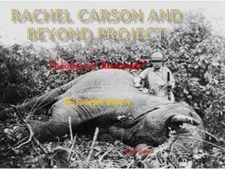 Rachel Carson and Beyond Project