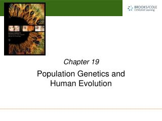 Population Genetics and  Human Evolution