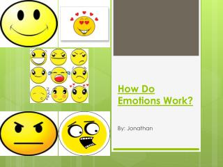 How Do Emotions Work?