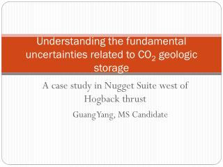 Understanding the fundamental  uncertainties  related to  CO 2 geologic storage