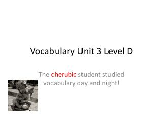Vocabulary Unit 3 Level D