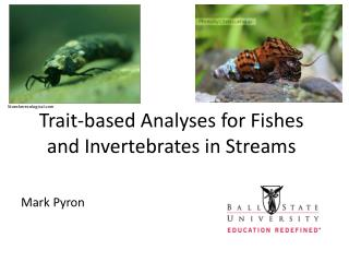 Trait-based Analyses  for Fishes  and  Invertebrates in Streams