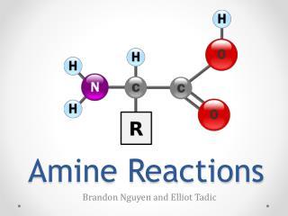 Amine Reactions