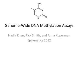 Genome-Wide DNA Methylation Assays