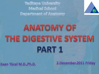 ANATOMY OF  THE DIGESTIVE SYSTEM  PART 1
