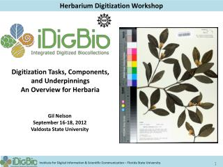 Herbarium Digitization Workshop