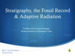 Stratigraphy, the Fossil Record  & Adaptive Radiation