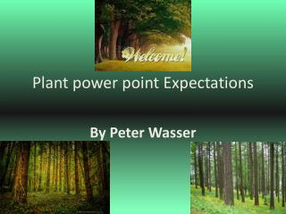 Plant power point Expectations