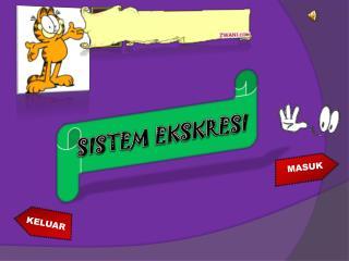 SISTEM EKSKRESI