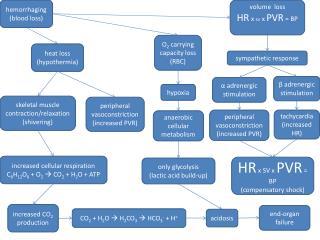 h emorrhaging (blood loss)