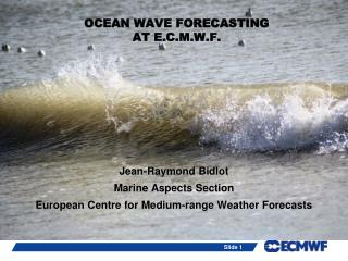 OCEAN WAVE FORECASTING  AT E.C.M.W.F.