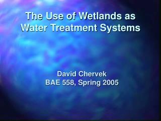 The Use of Wetlands as Water Treatment Systems