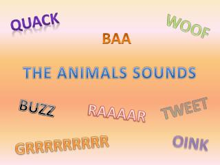 THE ANIMALS SOUNDS