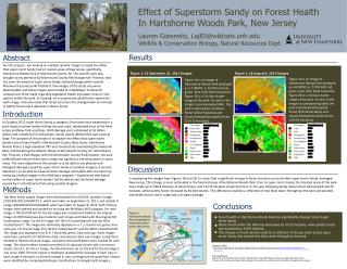 Effect of  Superstorm  Sandy on Forest Health In Hartshorne Woods Park, New Jersey