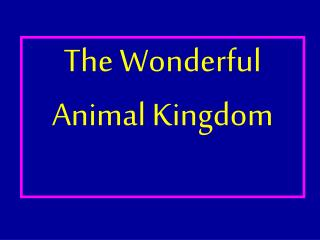 The Wonderful Animal Kingdom