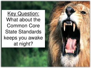 Key  Question: What  about the  Common Core State Standards keeps  you awake at night?
