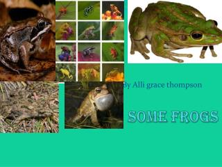 Some frogs