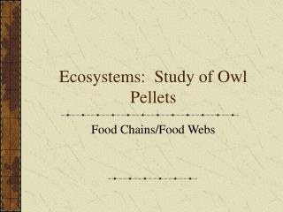 Ecosystems:  Study of Owl Pellets