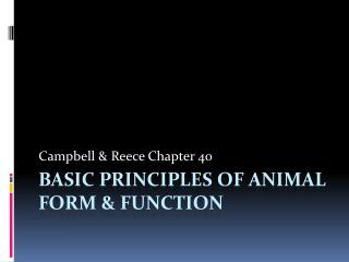 Basic Principles of animal form & function