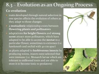8.3 – Evolution as an Ongoing Process