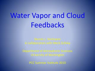 Water Vapor and Cloud Feedbacks