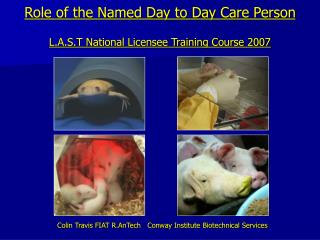 Role of the Named Day to Day Care Person L.A.S.T National Licensee Training Course 2007