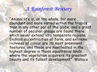 A Rainforest Bestiary