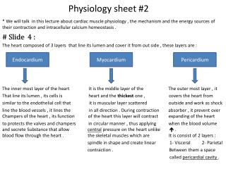 Physiology sheet #2