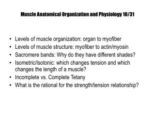 M uscle Anatomical Organization and  Physiology 10/31