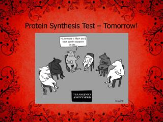 Protein Synthesis Test – Tomorrow!