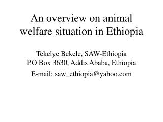 An overview on animal welfare situation in Ethiopia  Tekelye Bekele, SAW-Ethiopia P.O Box 3630, Addis Ababa, Ethiopia E-