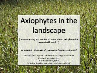 Axiophytes  in the landscape