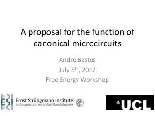 A proposal for the function of canonical microcircuits