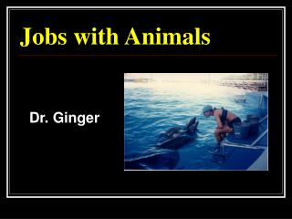 Jobs with Animals