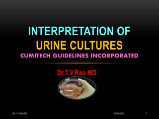 Interpretation of Urine Cultures
