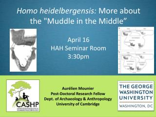 """Homo heidelbergensis : More about the """"Muddle in the Middle"""" April 16"""