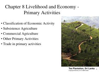 Chapter 8 Livelihood and Economy - Primary Activities