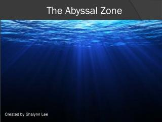 The Abyssal Zone