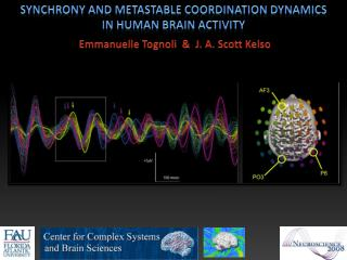 Synchrony and metastable coordination dynamics in human brain activity