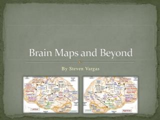 Brain Maps and Beyond