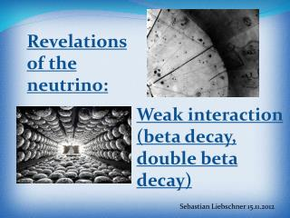 Revelations of the neutrino :